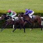 Zwei Pferde mit Jockeys in einem Pferderennen.