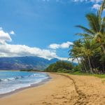 Beach Landscape auf Hawaii.