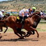 Pferderennen mit drei Pferden – zwei hiervon liefern sich ein knappes Rennen um die Spitze.